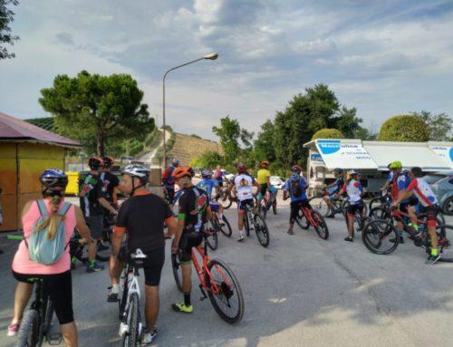 Wine & Bike Fest 2019